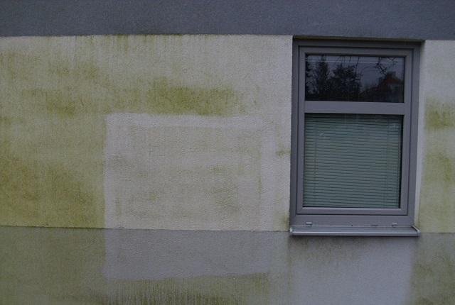 myti-fasad